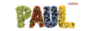 Bright Letters funeral flowers