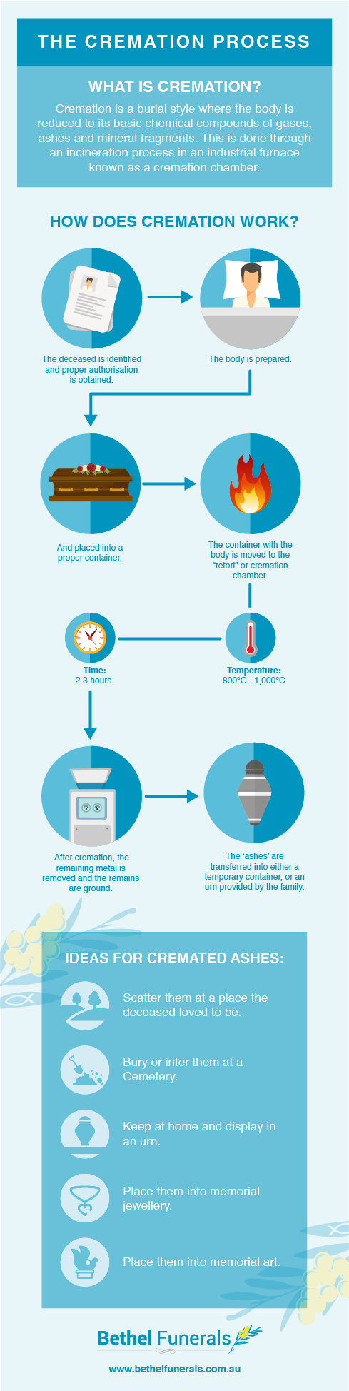 cremation process infographic